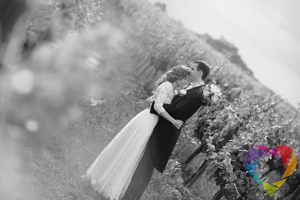 couple vineyard kiss